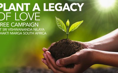37. PLANT A LEGACY OF LOVE
